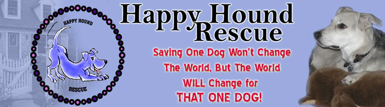Happy Hound Rescue: Saving One Dog Won't Change the world, but the world will change for that one Dog!